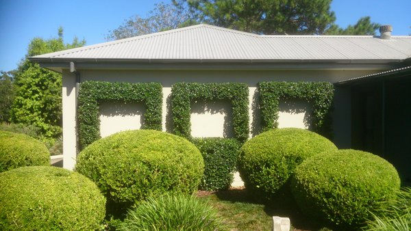 Landscape design for residential commercial and pools coffs harbour
