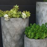 Online Store Now Open Visit Gardenexpressions Com Au